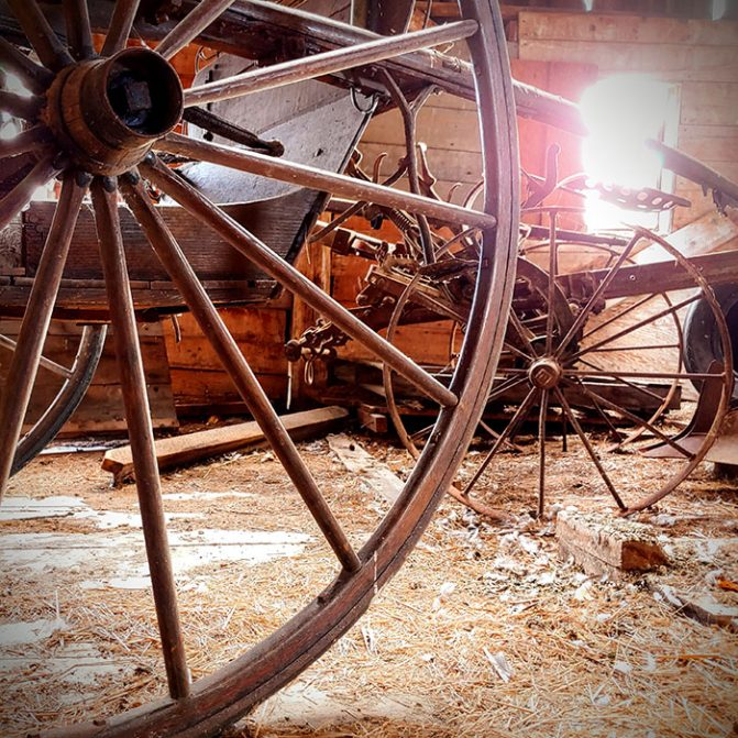 Buggy Wheels, up close